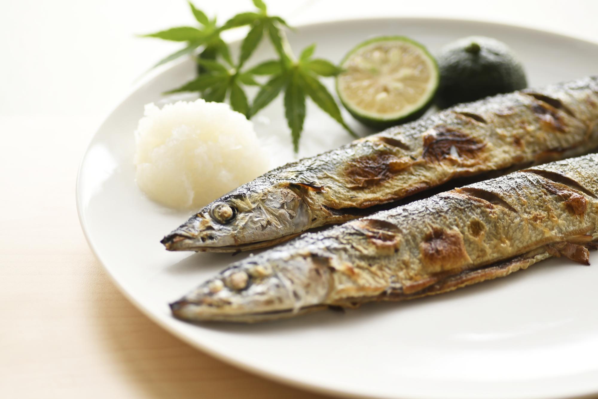 薄毛の人は魚を食べるべき?DHA・EPAの働きについて